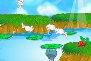 兔子和青蛙
