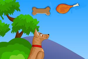 狗狗滑板吃肉