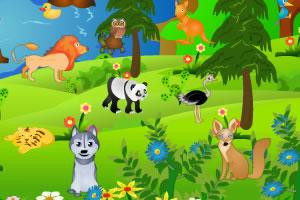 寻找野生动物