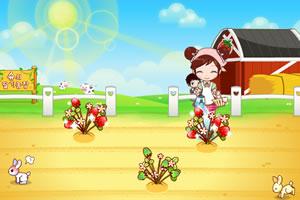 阿sue种草莓