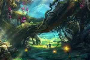 梦幻森林寻物