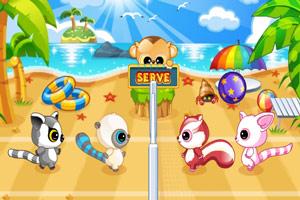 萌物玩沙滩排球