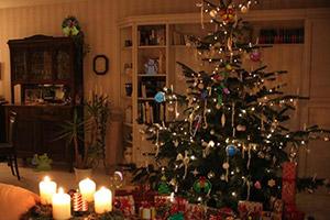 美丽圣诞夜寻物