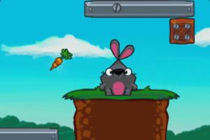 寻食的兔子