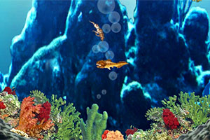 深海古代鱼