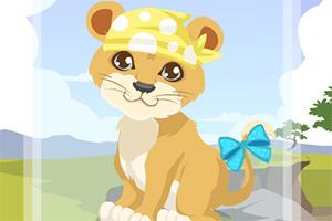 照顾小狮子