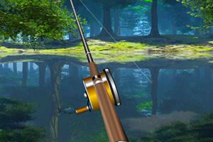 森林湖边钓鱼