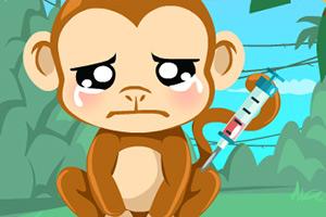 照顾萌小猴