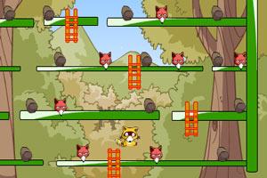 小浣熊收集坚果