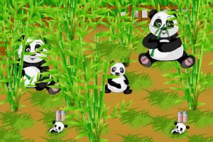 野生熊猫农场