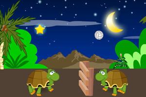 小乌龟玩排球