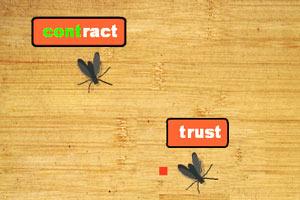 英语苍蝇拍