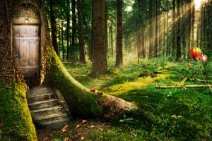魔法森林逃脱