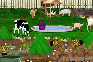 清理农场后院