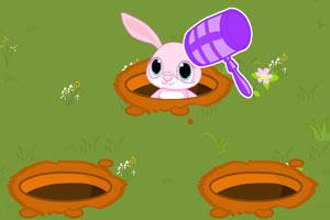 重锤打兔子