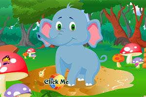 照顾顽皮小象