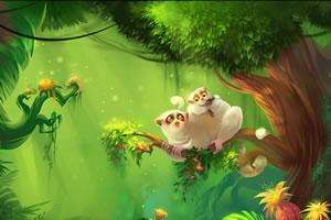 丛林里的秘密