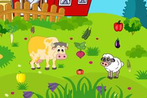 农场和草甸找蔬菜