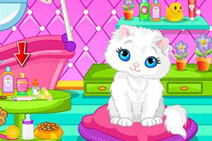 可爱猫咪洗澡