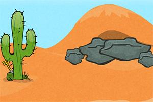 沙漠生存记