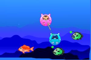 小猫潜水吃鱼