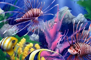 鱼世界找字母