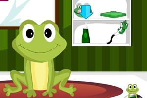 小青蛙护理