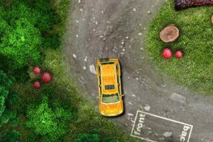 阳光森林停车