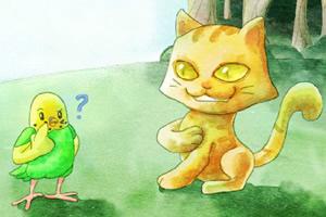 乐汐遇见猫