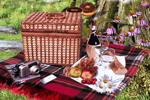 家庭野餐寻物