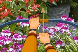 花丛里的瓢虫