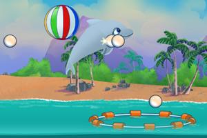 海豚表演秀