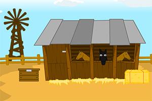 沙漠牧场寻找票根