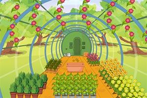 逃离植物温室