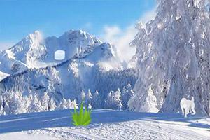 驯鹿逃离雪山