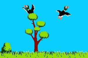 猎鸭与打飞盘