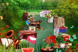 夏季农村寻物