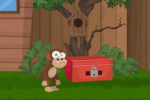 小猴智返森林