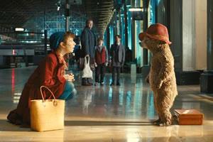 帕丁顿熊找数字