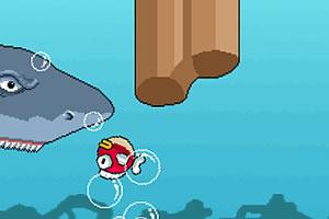 飞扬的小鱼
