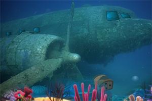 沉入海底的飞机逃脱