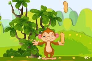 铁头猴接食物