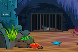 鲨鱼洞穴逃脱2