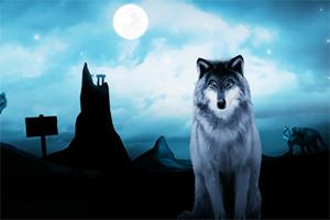 狼人丛林逃生
