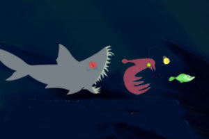 发光鱼觅食