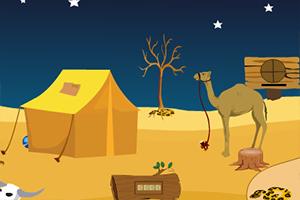 寻找骆驼逃生