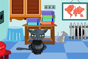 老鼠逃离小猫房间