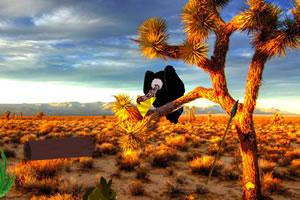 热带沙漠逃亡