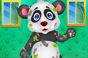 凌乱的小熊猫