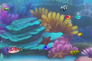 吃鱼世界三人版